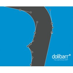 Dolibarr quick user guide
