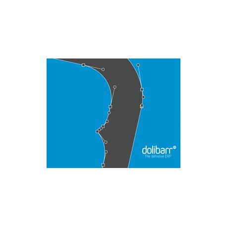 Guía rápida del usuario Dolibarr