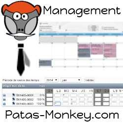 Management, costs and spent time management