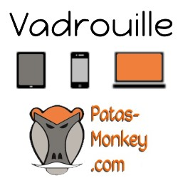 Vadrouille : activation of the mobile interface to the connection