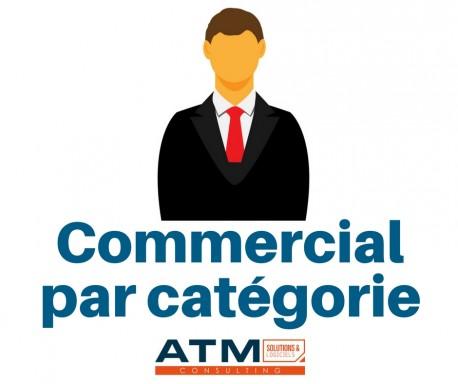 Commercial par catégorie 3.8 - 8.0.x