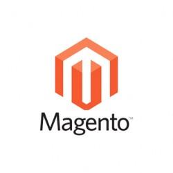 Magento API Key