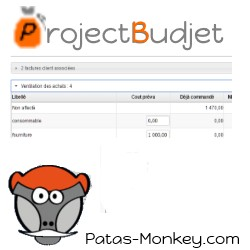 projectbudject :Forecasting and monitoring of costs per project