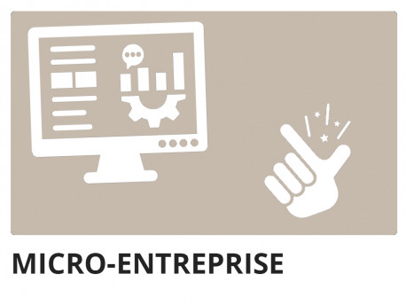 Micro-enterprise