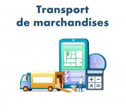 GESTION DE TRANSPORT DE LA MARCHANDISE DANS DOLIBARR
